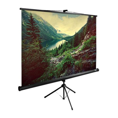 Фото - Экран Cactus TriExpert CS-PSTE-220x220-BK, 220х220 см, 1:1, напольный черный экран cactus triexpert 180x135cm 4 3 cs pste 180x135 bk