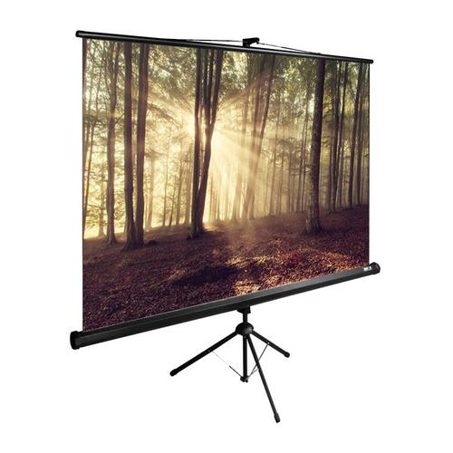 Экран CACTUS TriExpert CS-PSTE-180x135-BK, 180х135 см, 4:3, напольный черный CS-PSTE-180x135-BK по цене 5 900