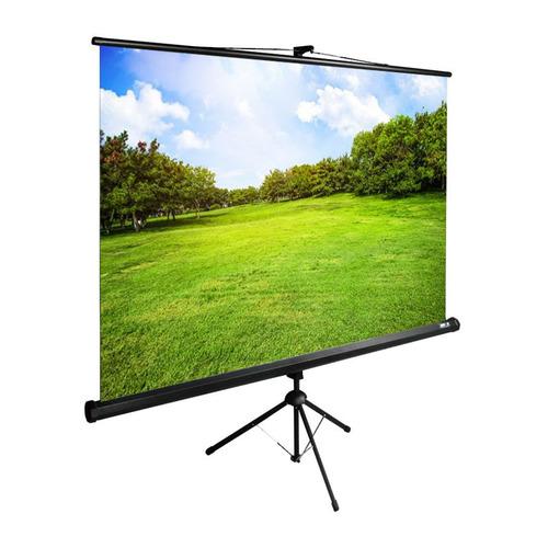 Фото - Экран Cactus TriExpert CS-PSTE-200x150-BK, 200х150 см, 4:3, напольный черный экран cactus triexpert 180x135cm 4 3 cs pste 180x135 bk