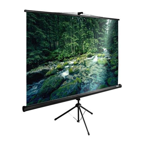 Фото - Экран Cactus TriExpert CS-PSTE-220x165-BK, 220х165 см, 4:3, напольный черный экран cactus triexpert 180x135cm 4 3 cs pste 180x135 bk