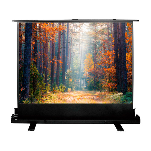 Фото - Экран CACTUS FloorExpert CS-PSFLE-180X135, 180х135 см, 4:3, напольный экран cactus floorexpert cs psfle 120x90 120х90 см 4 3 напольный