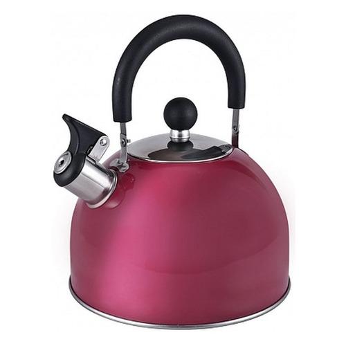 Фото - Металлический чайник ENDEVER 302, 3л, бордовый [80478] endever чайник aquarelle 301 302 303 3 л красный