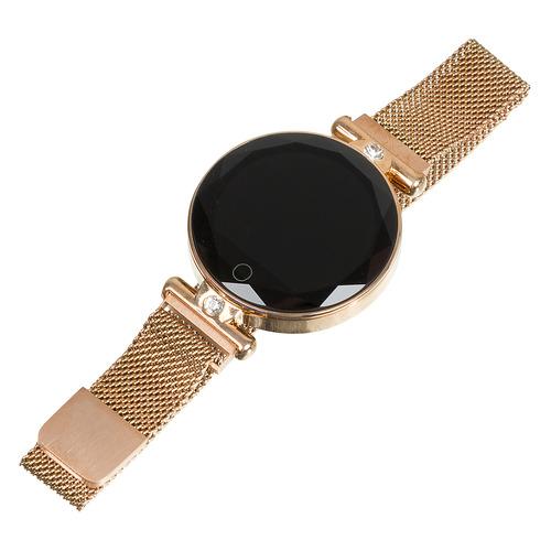 Смарт-часы SMARTERRA SmartLife Vega, 1.08, розовое золото / розовое золото [smlvegag] часы smarterra smartlife vega
