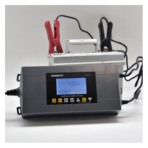Зарядное устройство BERKUT BCA-25 недорого