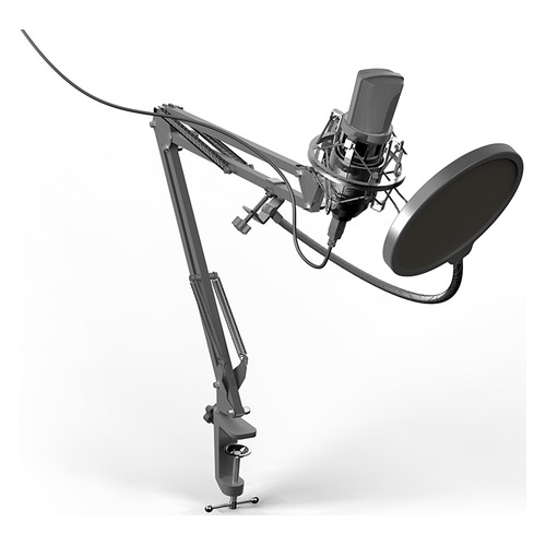 Микрофон RITMIX RDM-169, черный [80000749] микрофон ritmix rdm 127 хром черный [15120026]