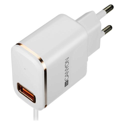 Сетевое зарядное устройство CANYON CNE-CHA043WR, USB, 8-pin Lightning (Apple), 2.1A, белый/золотистый