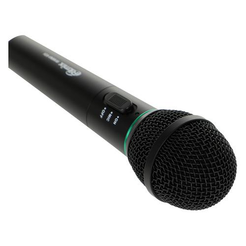 Микрофон RITMIX RWM-101, черный [15115476]