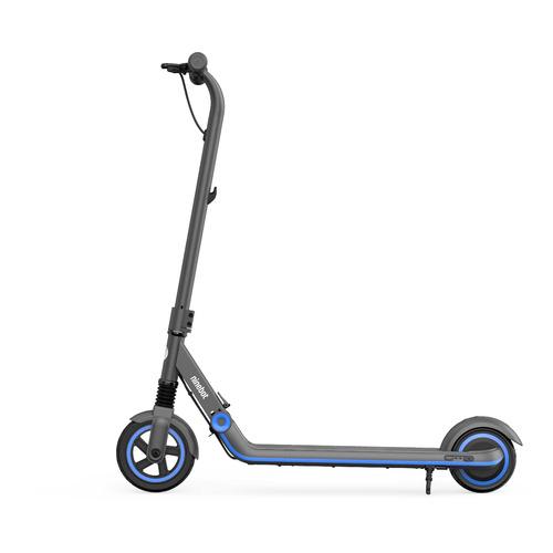Электросамокат NINEBOT KickScooter Zing E10, 2550mAh, черный [aa.00.0002.32]
