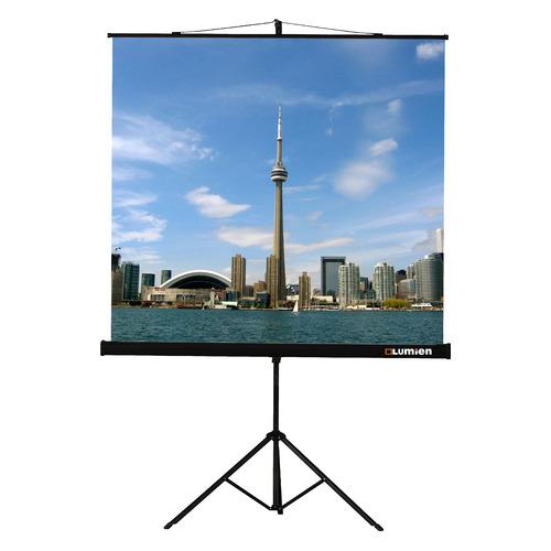 Фото - Экран LUMIEN Eco View LEV-100112, 244х183 см, 4:3, напольный кулон кристалл содалит 4 см