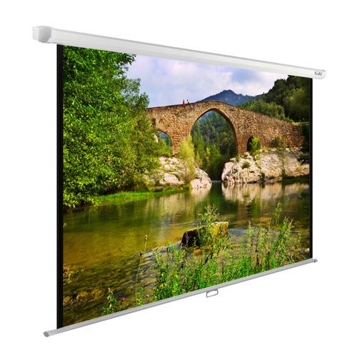 Фото - Экран CACTUS WallExpert CS-PSWE-220x165-WT, 220х165 см, 4:3, настенно-потолочный белый кеды мужские vans ua sk8 mid цвет белый va3wm3vp3 размер 9 5 43