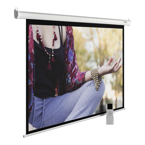 Фото - Экран CACTUS MotoExpert CS-PSME-280x210-WT, 280х210 см, 4:3, настенно-потолочный белый экран cactus motoexpert cs psme 280x210 wt 280х210 см 4 3 настенно потолочный белый