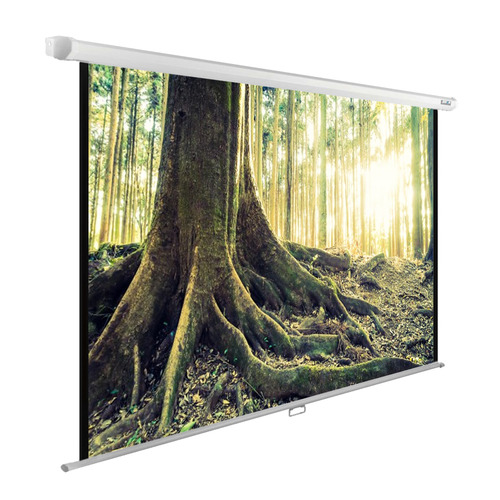 Фото - Экран CACTUS WallExpert CS-PSWE-220x220-WT, 220х220 см, 1:1, настенно-потолочный экран digis space dssm 162204 220х220 см 16 9 настенно потолочный