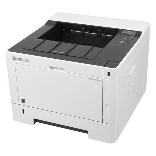 Фото - Принтер лазерный KYOCERA Ecosys P2040DW лазерный, цвет: черный [1102ry3nl0] кеды мужские vans ua sk8 mid цвет белый va3wm3vp3 размер 9 5 43
