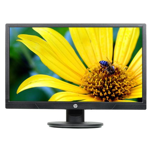 Монитор HP ProDisplay V214a 20.7