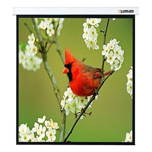Фото - Экран LUMIEN Master Picture LMP-100129, 220х220 см, 1:1, настенно-потолочный экран digis space dssm 162204 220х220 см 16 9 настенно потолочный