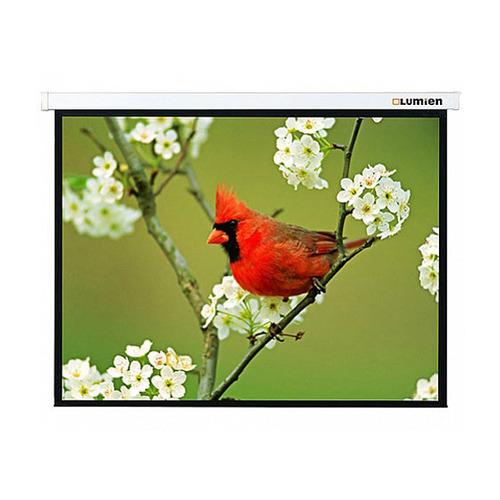 Фото - Экран LUMIEN Master Picture LMP-100107, 305х305 см, 1:1, настенно-потолочный экран lumien master picture lmp 100109 203х153 см 4 3 настенно потолочный