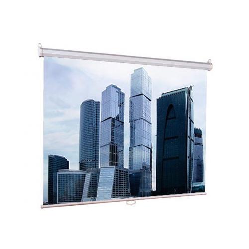 Экран Lumien Eco Picture LEP-100105, 160х160 см, 1:1, настенно-потолочный