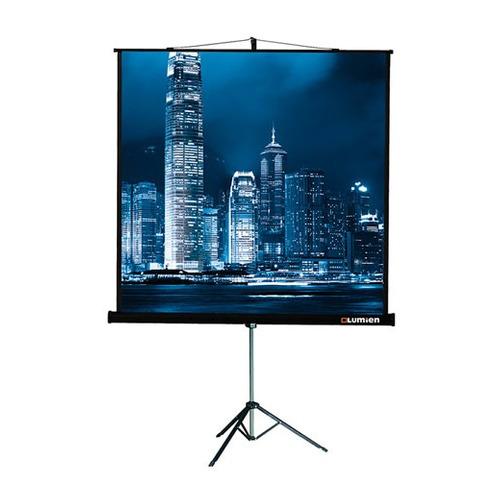 Фото - Экран LUMIEN Master View LMV-100108, 244х183 см, 4:3, напольный yumi юбка длиной 3 4