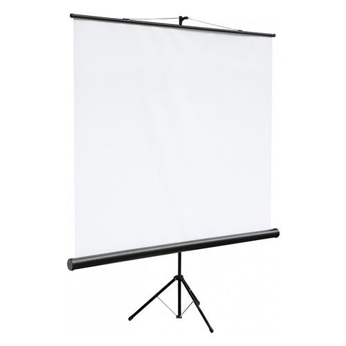 цена на Экран Digis DSKC-1101, 160х160 см, 1:1, напольный черный